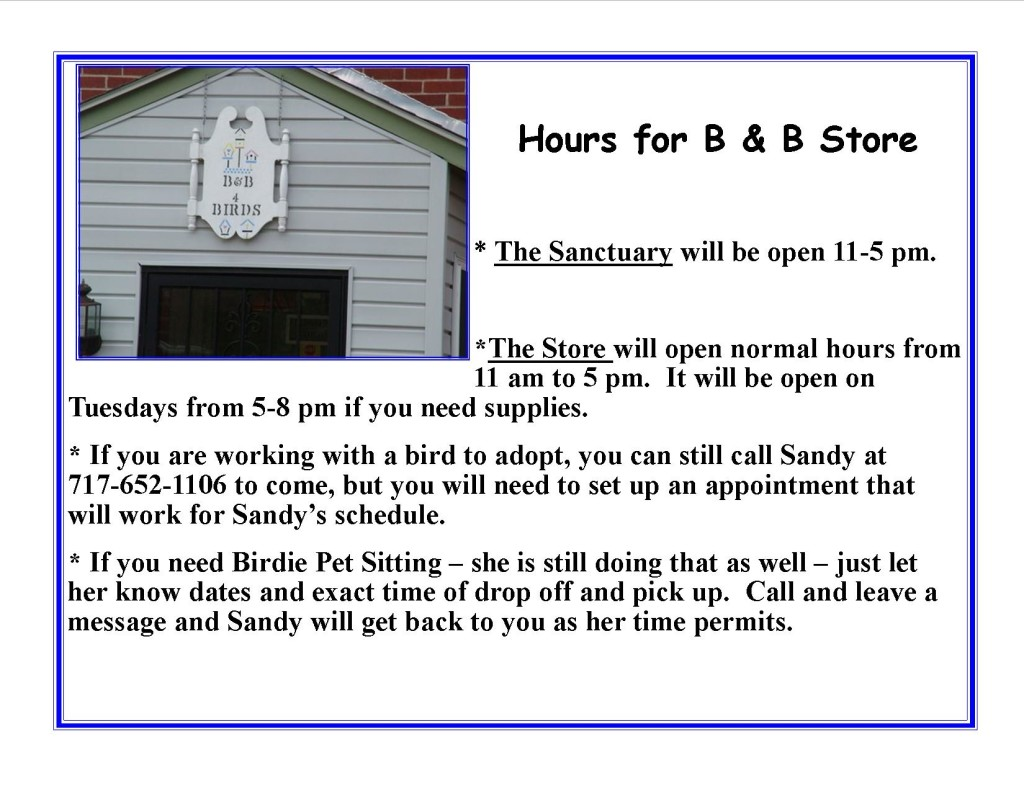 B&B Store winter 2016 hours